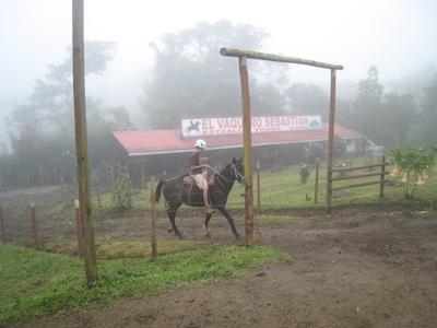 Ivan_stable