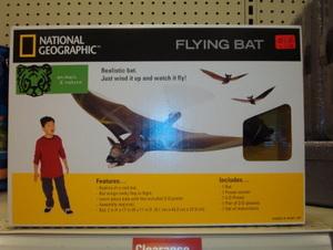 Bat_box_front
